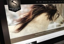 Shady Spring Stables Website