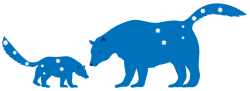 Ursa-Minor-Ursa-Major